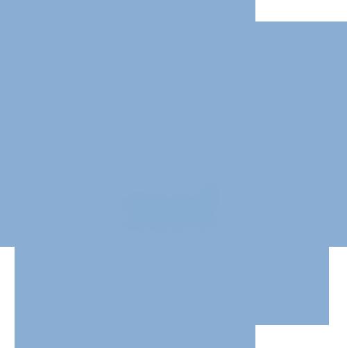 Kiropraktiska Föreningen i Sverige